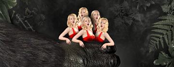 iPhone-game-for-men-Big-Apes-Love-Blondes