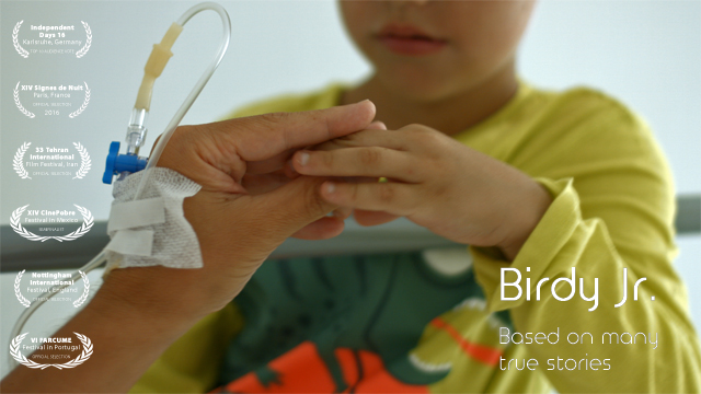 Birdy Jr is a short film about loss